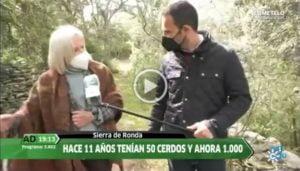 andalucia directo habla de jamones 100% ibericos